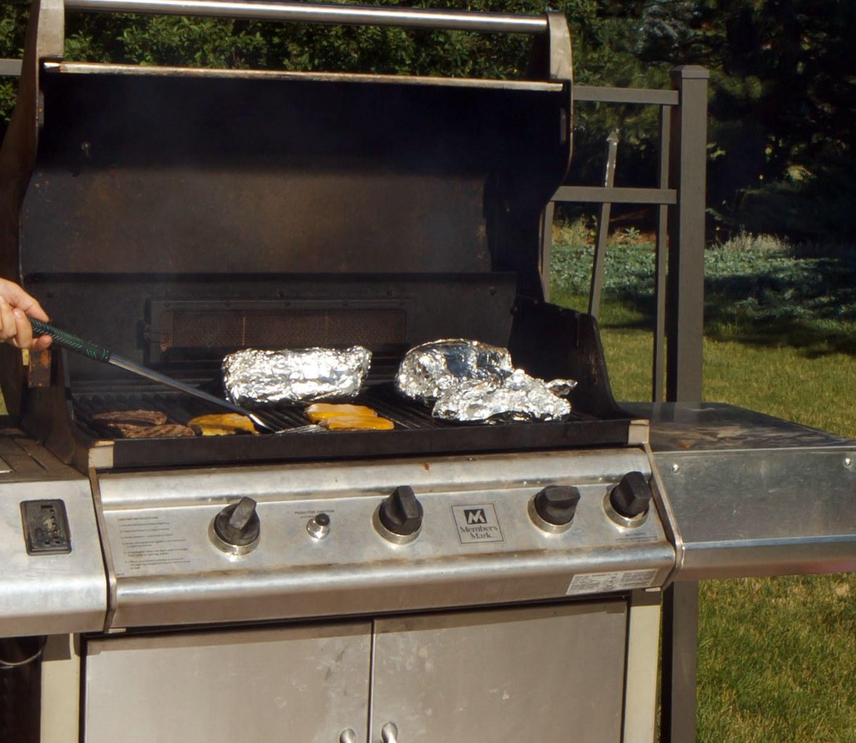 Bien choisir ses cannes et ses moulinets pour p cher les tutos p che chasse nos animaux - Quel barbecue choisir ...