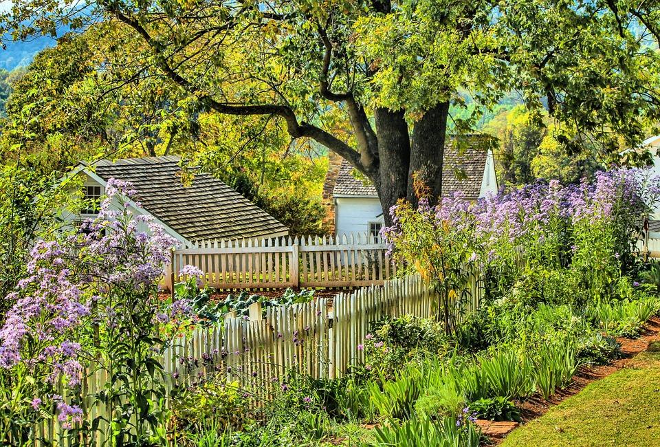 bordure bois jardin